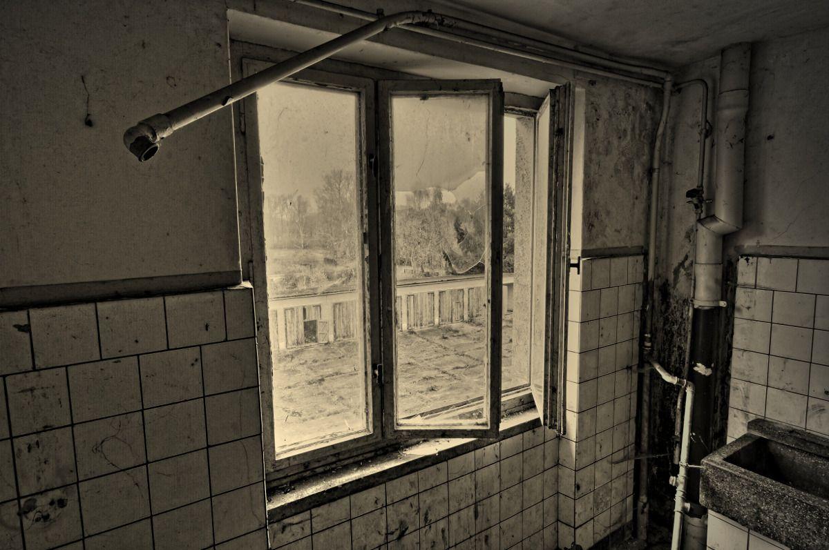 Fenster zum hof sony for Fenster zum hof
